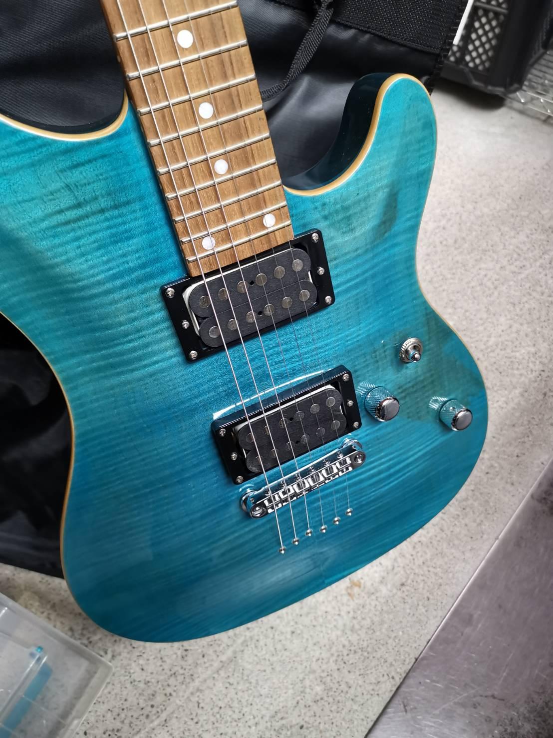ギター シェクター